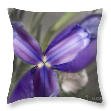 The Color Of January 2 Throw Pillow
