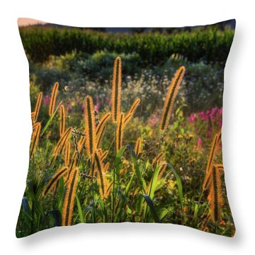 Throw Pillow featuring the photograph The Color Of Summer 2017 by Bill Wakeley