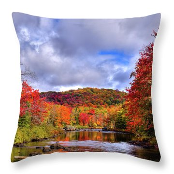 Throw Pillow featuring the photograph The Colors Of Fall On The Moose River by David Patterson