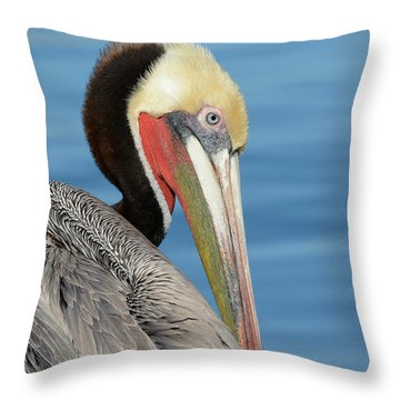 The Colors Of Love Throw Pillow by Fraida Gutovich