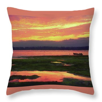 The Colors Of Ship Creek Throw Pillow
