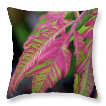 The Colors Of Shumac 9 Throw Pillow