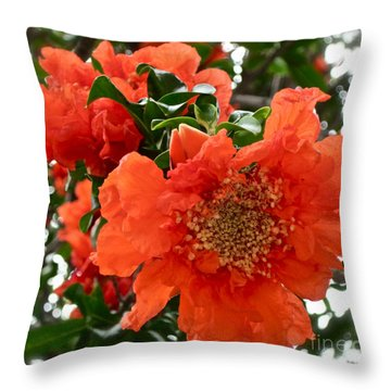 The Colour Orange Throw Pillow by Gwyn Newcombe