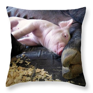 Throw Pillow featuring the photograph The Comfort Of Mom by Robert Geary