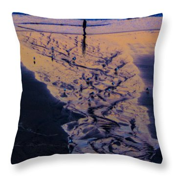 The Comming Day Throw Pillow by Dale Stillman