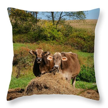The Company Of 2 Throw Pillow