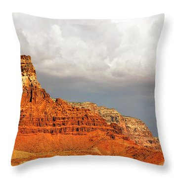 The Condor's Land Throw Pillow