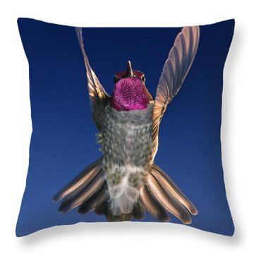 The Conductor Of Hummer Air Orchestra Throw Pillow by William Lee