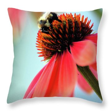 The Coneflower Collection 2 Throw Pillow