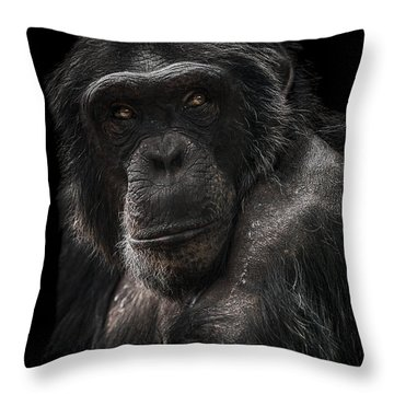The Contender Throw Pillow by Paul Neville