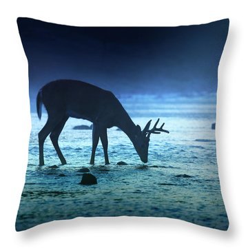 The Cool Of The Night - Square Throw Pillow