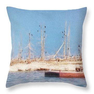 The Cormorants At Deaths Door Throw Pillow