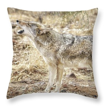 The Coyote Howl Throw Pillow