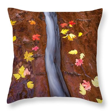 Throw Pillow featuring the photograph The Crack by Patricia Davidson