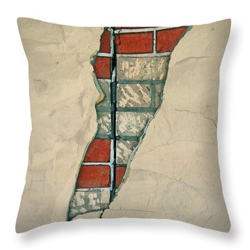 The Cracked Wall Throw Pillow