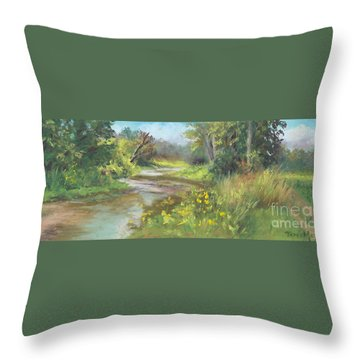 The Creek At 1302 Throw Pillow by Terri  Meyer