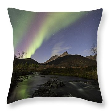 The Creek II Throw Pillow