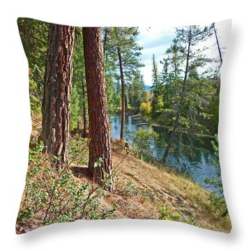 The Creek Throw Pillow by Nancy Harrison