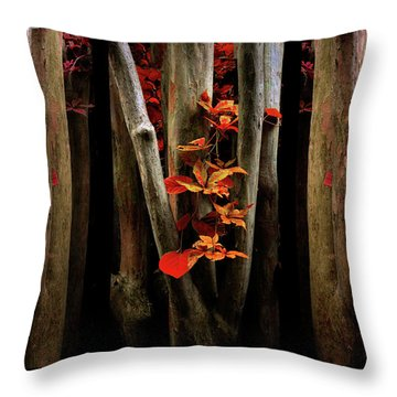 Throw Pillow featuring the photograph The Crimson Forest by Jessica Jenney