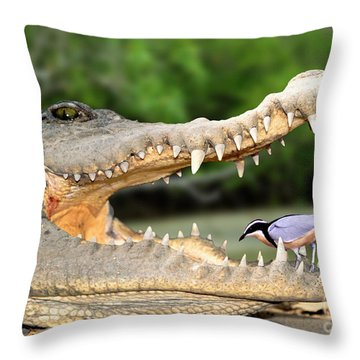 The Crocodile Bird Throw Pillow