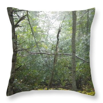 Throw Pillow featuring the photograph The Cross In The Woods by Diannah Lynch