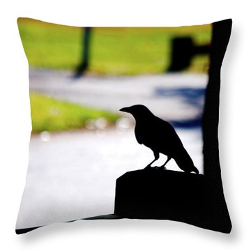 Throw Pillow featuring the photograph The Crow Awaits by Karol Livote