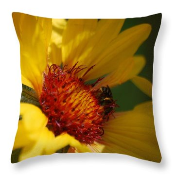 Throw Pillow featuring the photograph The Daisy And The Bee by Ramona Whiteaker