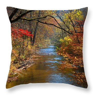 The Dan River Throw Pillow by Kathryn Meyer