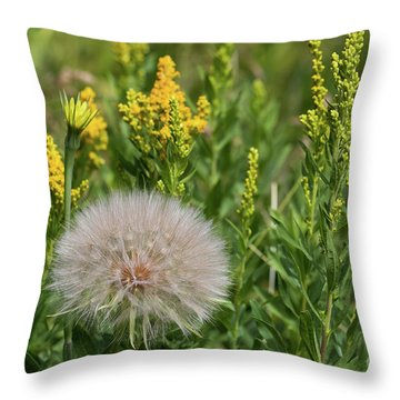 The Dandelion  Throw Pillow
