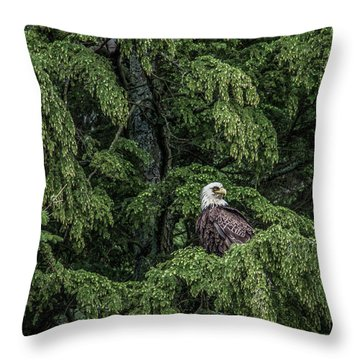 Throw Pillow featuring the photograph The Dark Eyed One by Timothy Latta