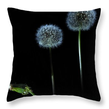 The Darkness Can't Hide You Throw Pillow