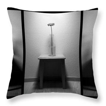 The Day Goes By - Dawn Til Dusk Throw Pillow