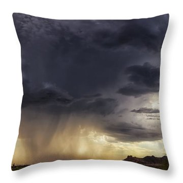 The Day It Rained Throw Pillow