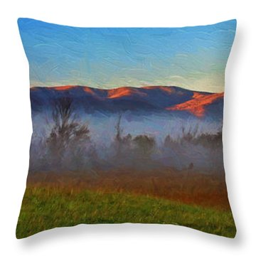 The Day Starts Throw Pillow