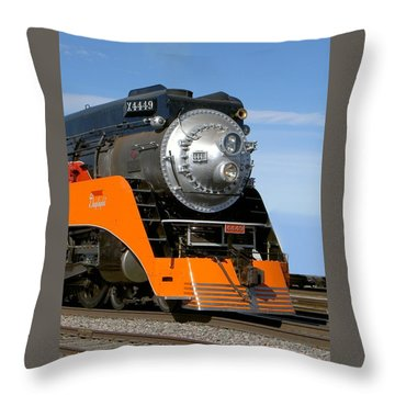 The Daylight 4449 Throw Pillow