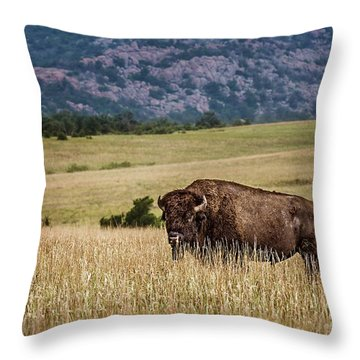 The Days End Throw Pillow by Tamyra Ayles