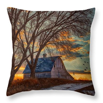 The Day's Last Kiss Throw Pillow