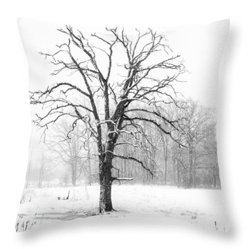 The Stillness Throw Pillow