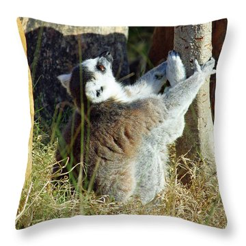 The Debate Throw Pillow by Inspirational Photo Creations Audrey Woods