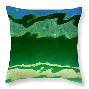 Throw Pillow featuring the photograph The Deep End by Wendy Wilton