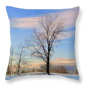 The Delight Throw Pillow by Elfriede Fulda