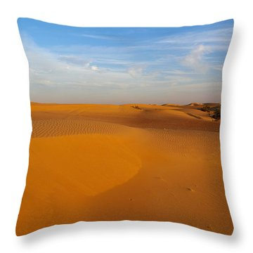 The Desert  Throw Pillow by Jouko Lehto
