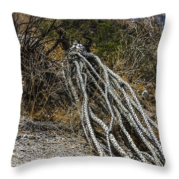 The Desert Sentinel Throw Pillow