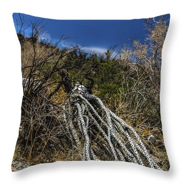 Throw Pillow featuring the photograph The Desert Sentinel by Break The Silhouette