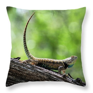 Throw Pillow featuring the photograph The Desert Spiny Stance  by Saija Lehtonen
