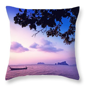 The Deserved Rest Throw Pillow