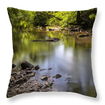 Throw Pillow featuring the photograph The Devon River by Jeremy Lavender Photography