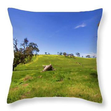 Throw Pillow featuring the photograph The Distant Hill by Douglas Barnard