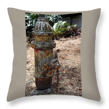 Throw Pillow featuring the photograph The Doggy Did It by Irma BACKELANT GALLERIES