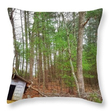 The Doghouse  Throw Pillow
